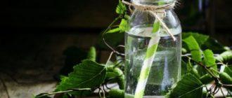 полезно ли пить березовый сок