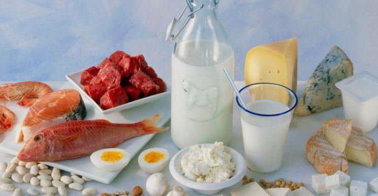белковая диета вредит