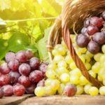 Почему полезно есть виноград