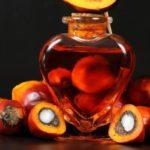 Почему пальмовое масло так вредно для здоровья