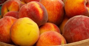 10 полезных свойств персиков