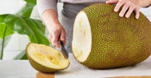 10 полезных свойств джекфрута