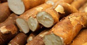 10 полезных свойств корнеплода маниока