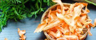 чем полезна сушеная морковь