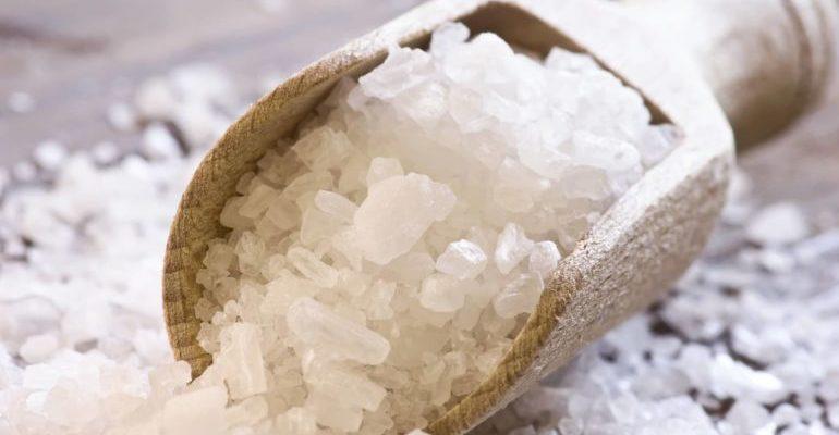 организм требует соленого причины